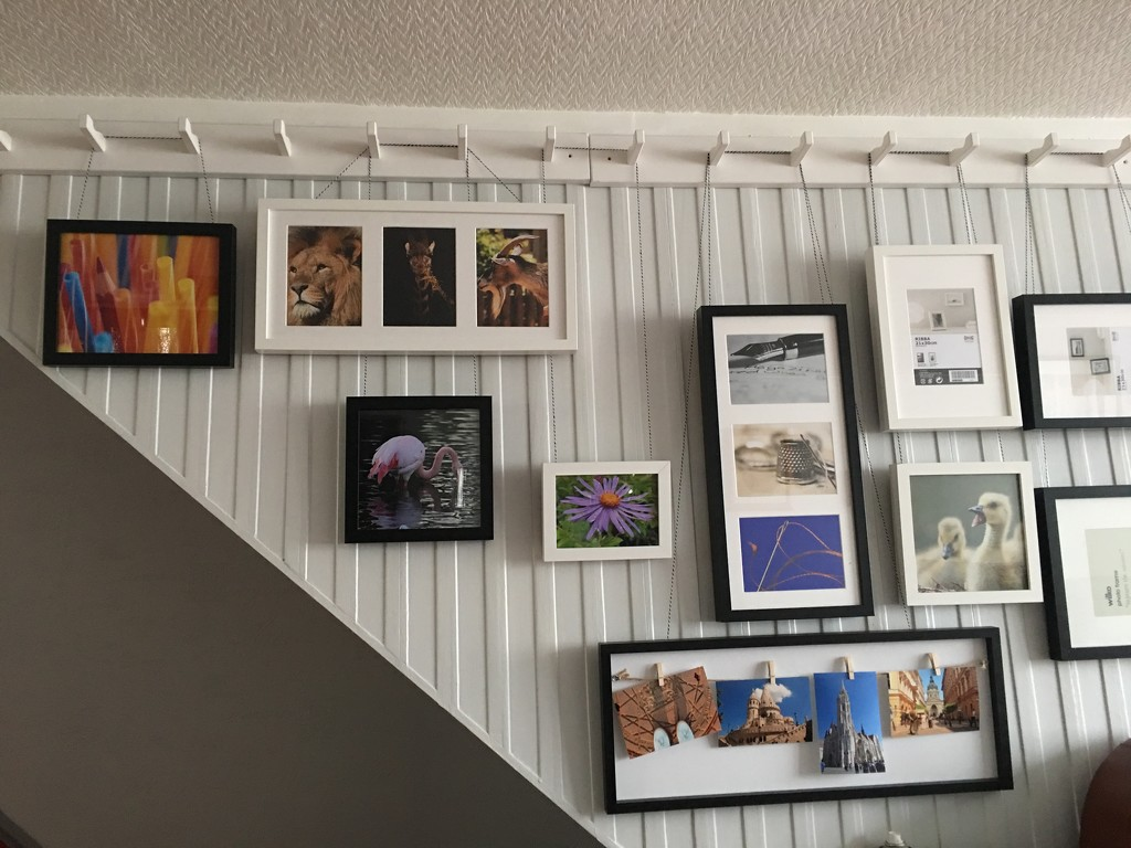 Just love my 'new gallery wall'  by bizziebeeme