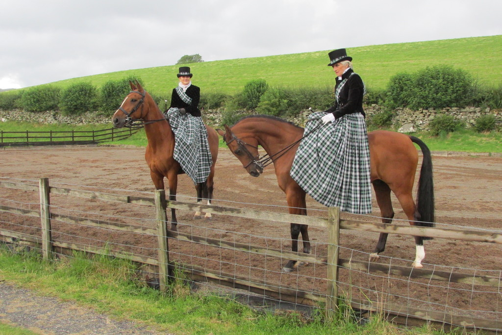 side-saddle dressage in historic costume by anniesue