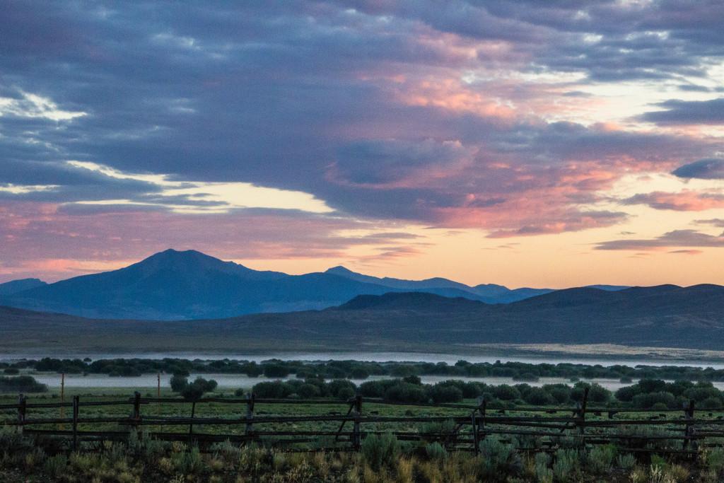 Foggy Sunrise by jetr