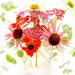 rosy posy by pistache