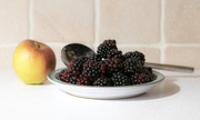 30th Jul 2017 - Blackberries and Apple 2
