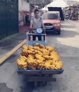 29th Jul 2017 - Bananas