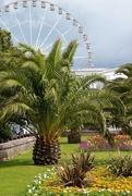 24th Jul 2017 - Torquay Big Wheel & Gardens