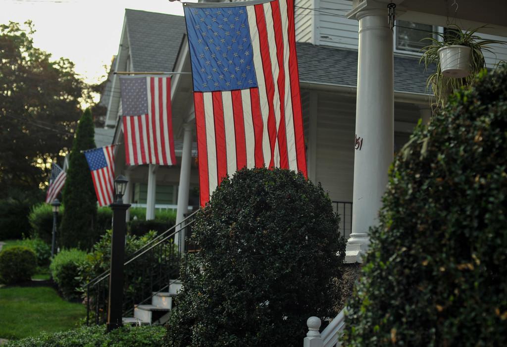 Patriotic by loweygrace