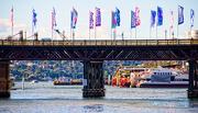 29th Jul 2017 - Pyrmont Bridge