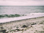 2nd Aug 2017 - A walk along the shore...