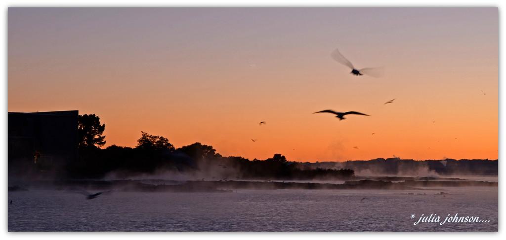 steamy sunrise .. by julzmaioro