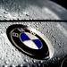 BMW, one year on