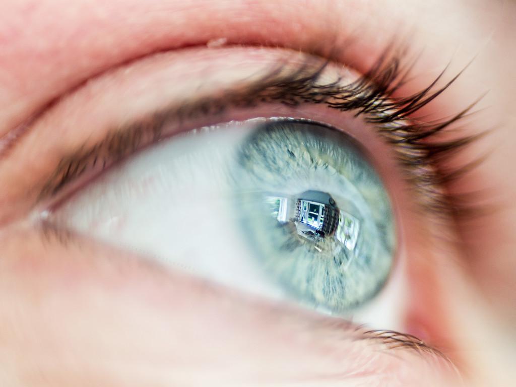 round eye square window by pistache
