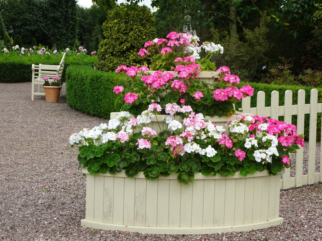 Tiered , just like a wedding cake ! by beryl