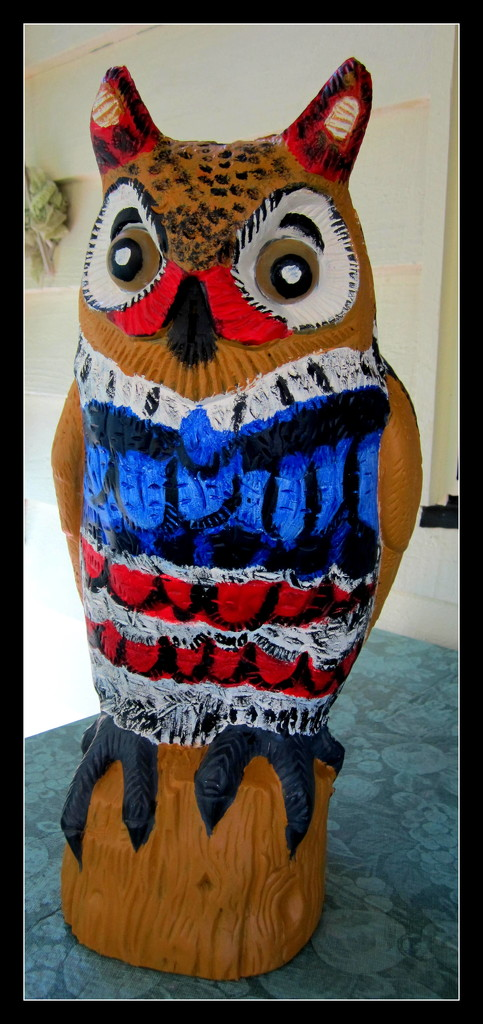 Painted Owl-to try to frighten the Cat birds from pooing on my balcony by 777margo