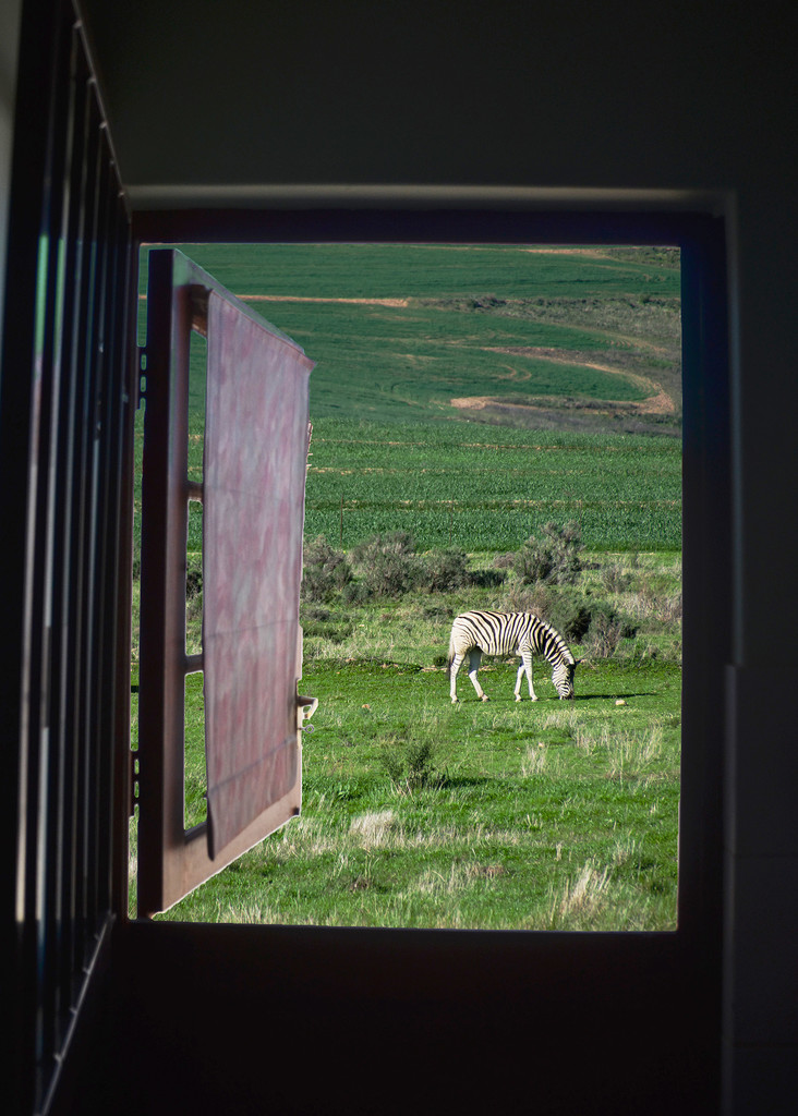A Wishful View Through the Door by salza