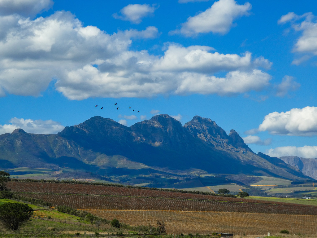 Simonsberg from a different angle...... by ludwigsdiana