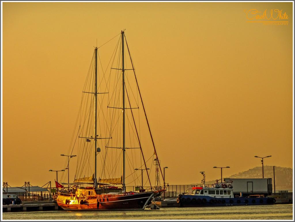 Golden Glow by carolmw