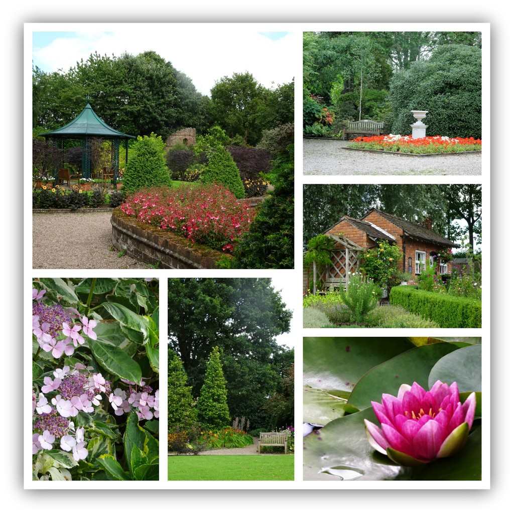 Around the gardens at Bridgemere  by beryl