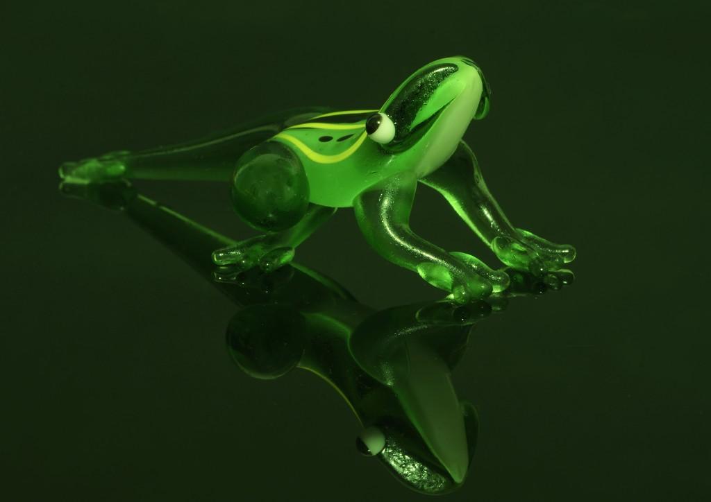It's Not Easy Being Green..._DSC5452 by merrelyn