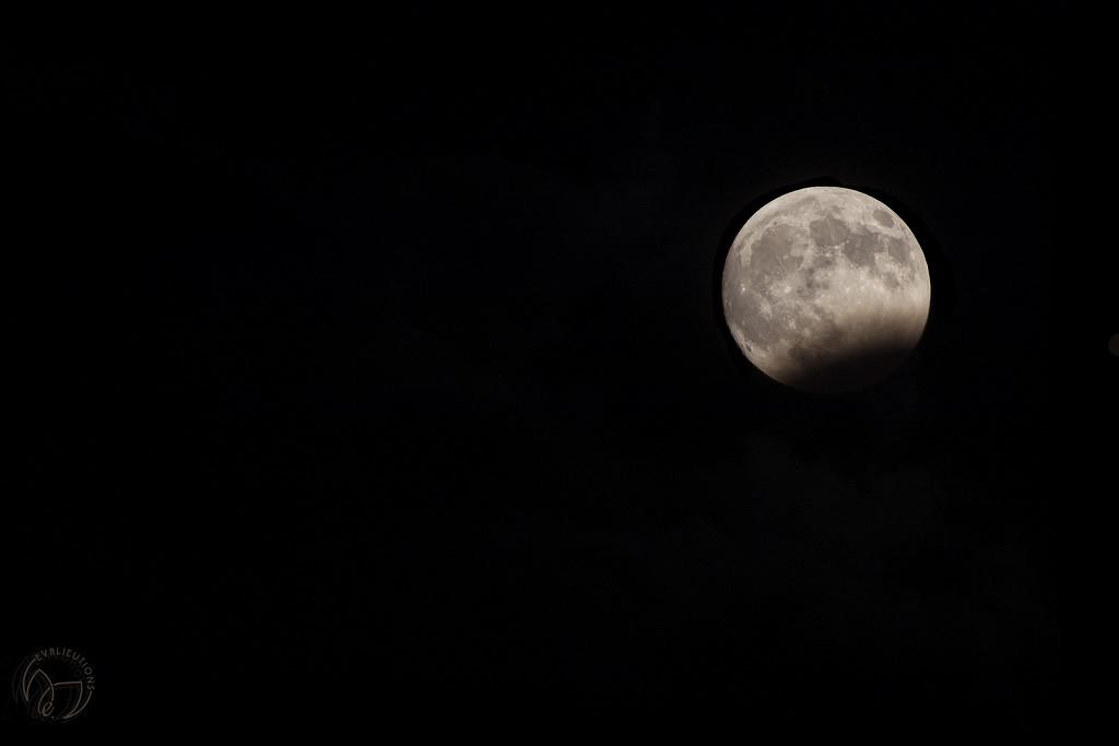 Partial Eclipse by evalieutionspics