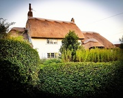 10th Aug 2017 - Thatched House.