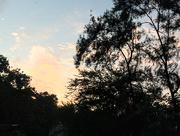 11th Aug 2017 - Beautiful skies