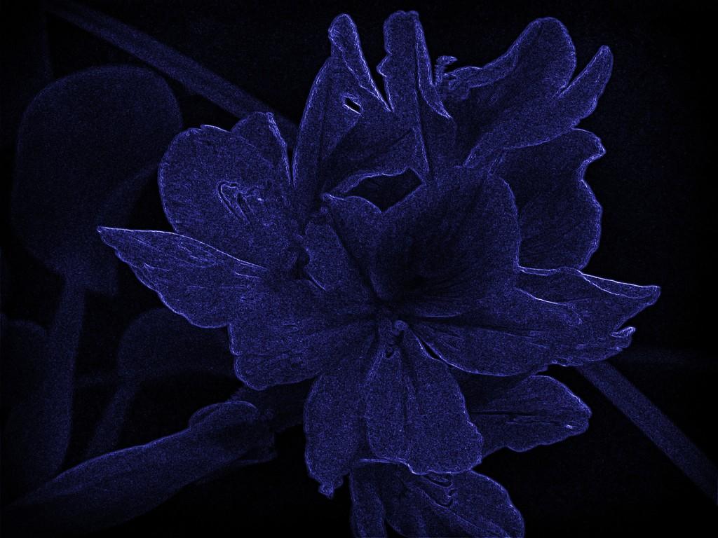 Midnight Magic by grammyn