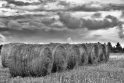 10th Aug 2017 - The Hay Bales of Kings Highway