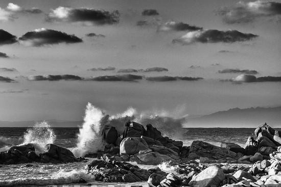 8.12 Wave by domenicododaro