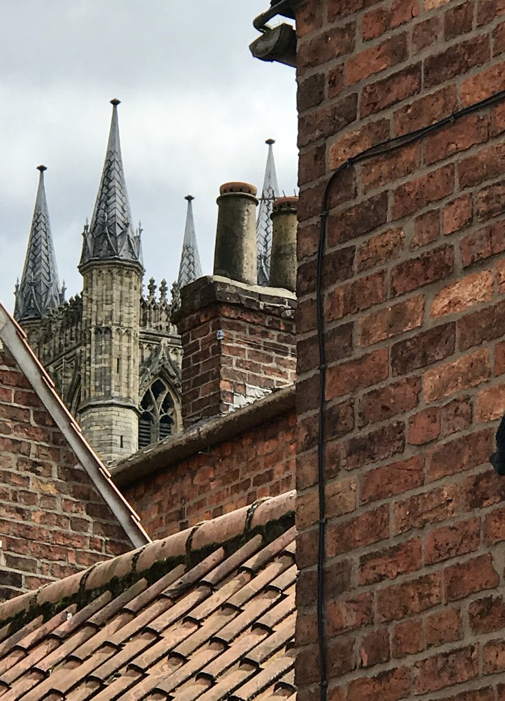 Rooftops by carole_sandford