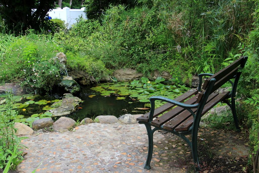 2016 11 05 Erinvale Gardens by kwiksilver