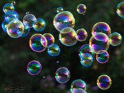 14th Aug 2017 - Never too old for blowing soap bubbles