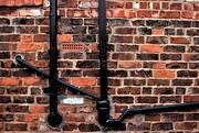 13th Aug 2017 - A wall in Altrincham