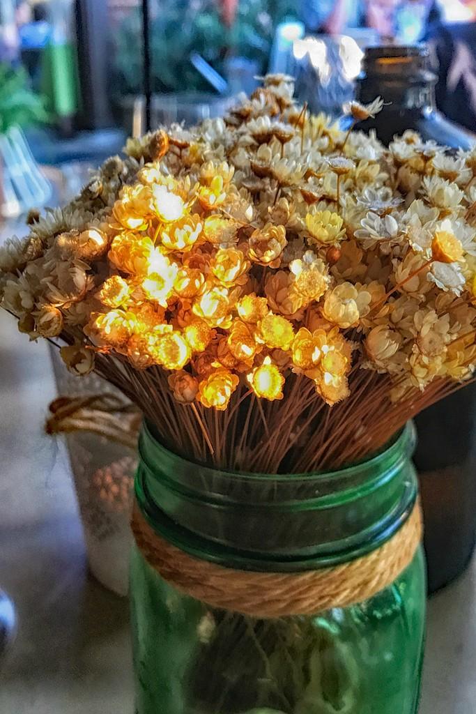 Dried Flowers by jaybutterfield