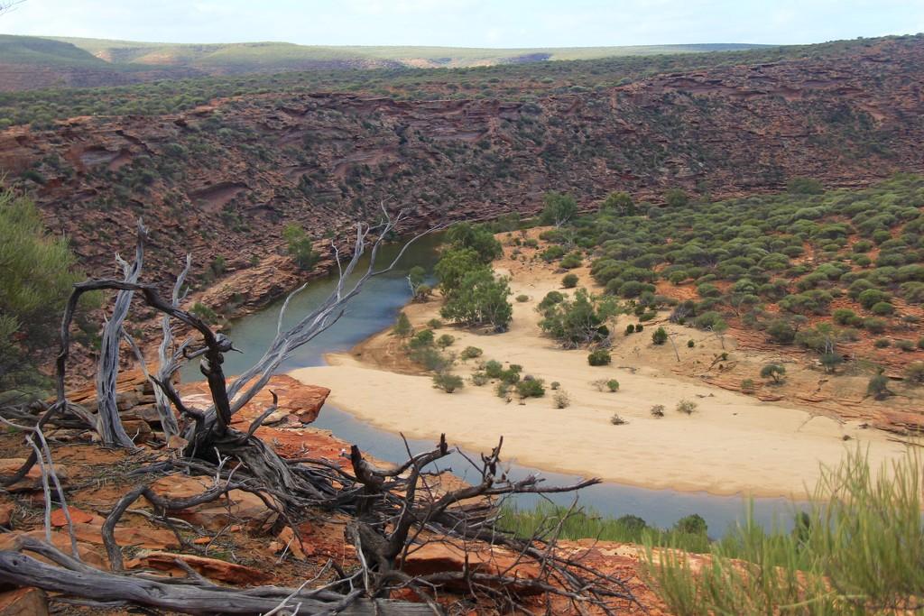 Nature's Way by landownunder