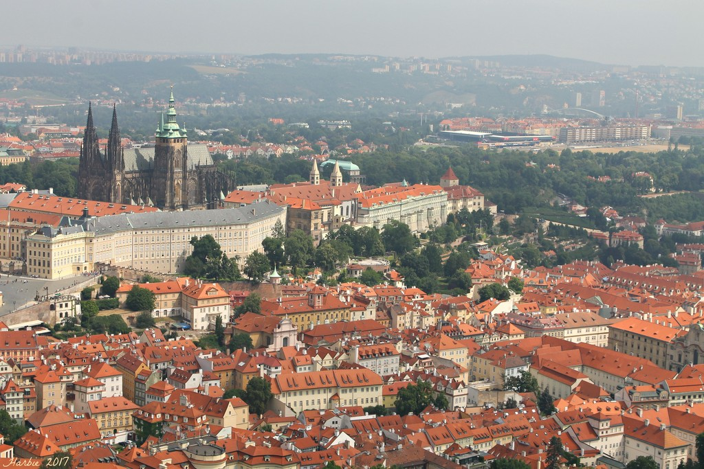 Prague I:  Red Roofs by harbie