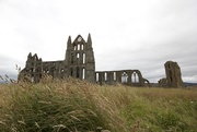 20th Jul 2017 - Whitby abbey
