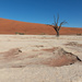 Welcome to Deadvlei