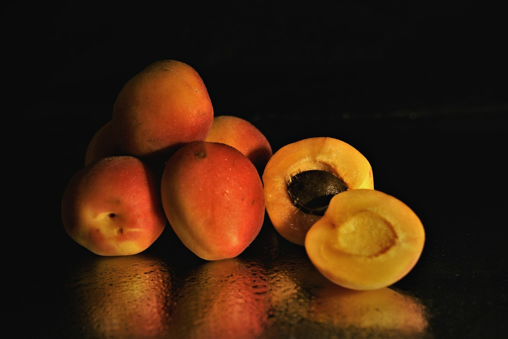 Apricot time by vincent24
