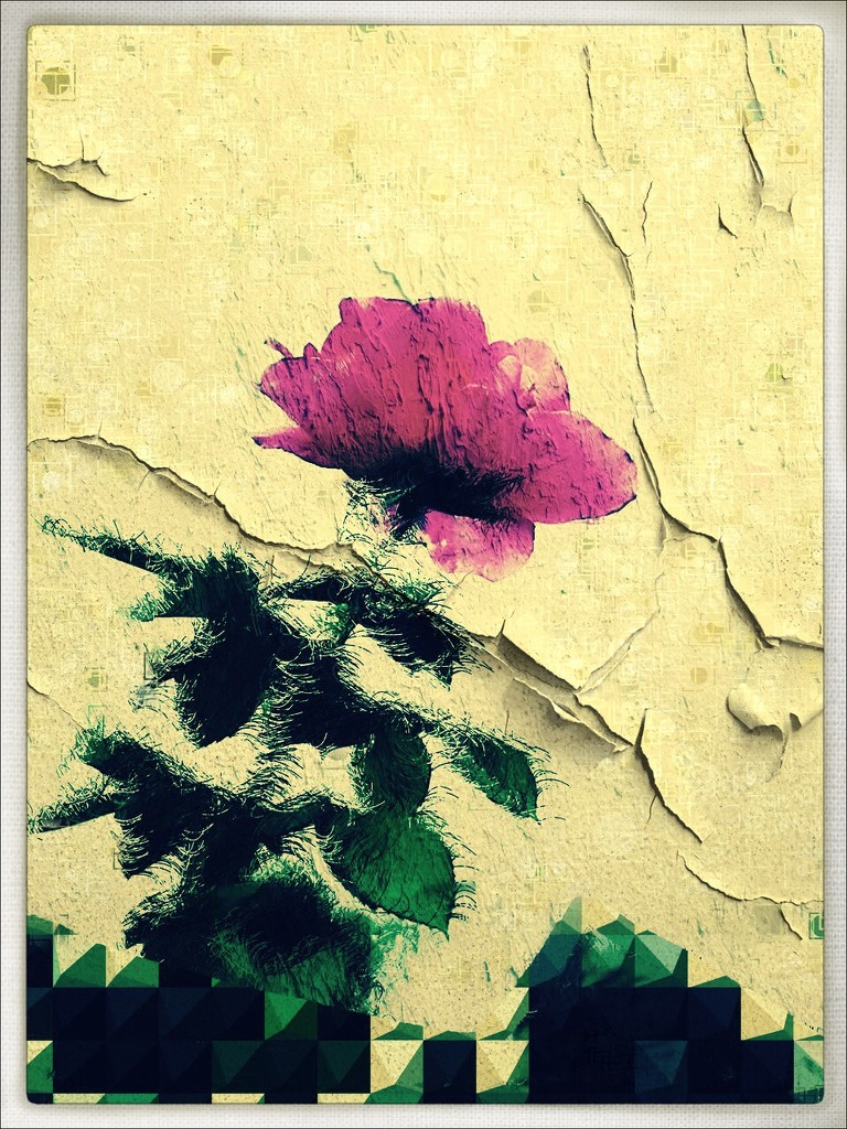 Abstract Rose by kathyboyles