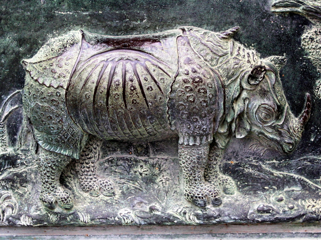 Rhinoceros, Duomo doors by boxplayer