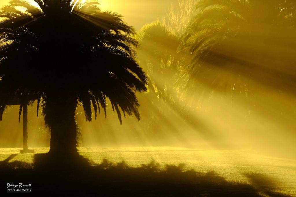 This is not a sunrise! by dkbarnett
