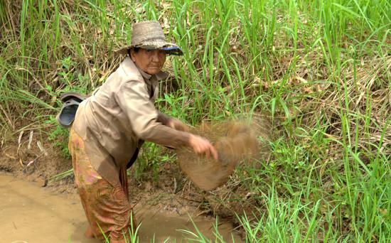 Rural Thailand by leananiemand