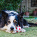 Chilling with my ball by salza