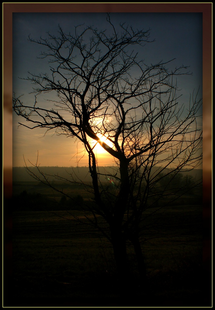 Good Morning 2011 by digitalrn