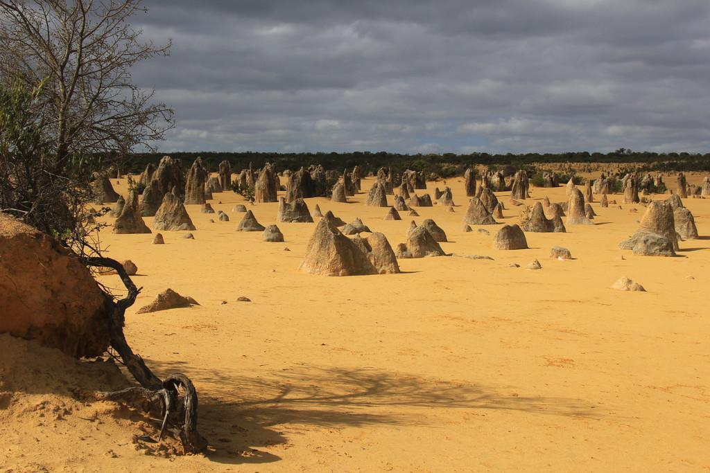 The Pinnacles by landownunder