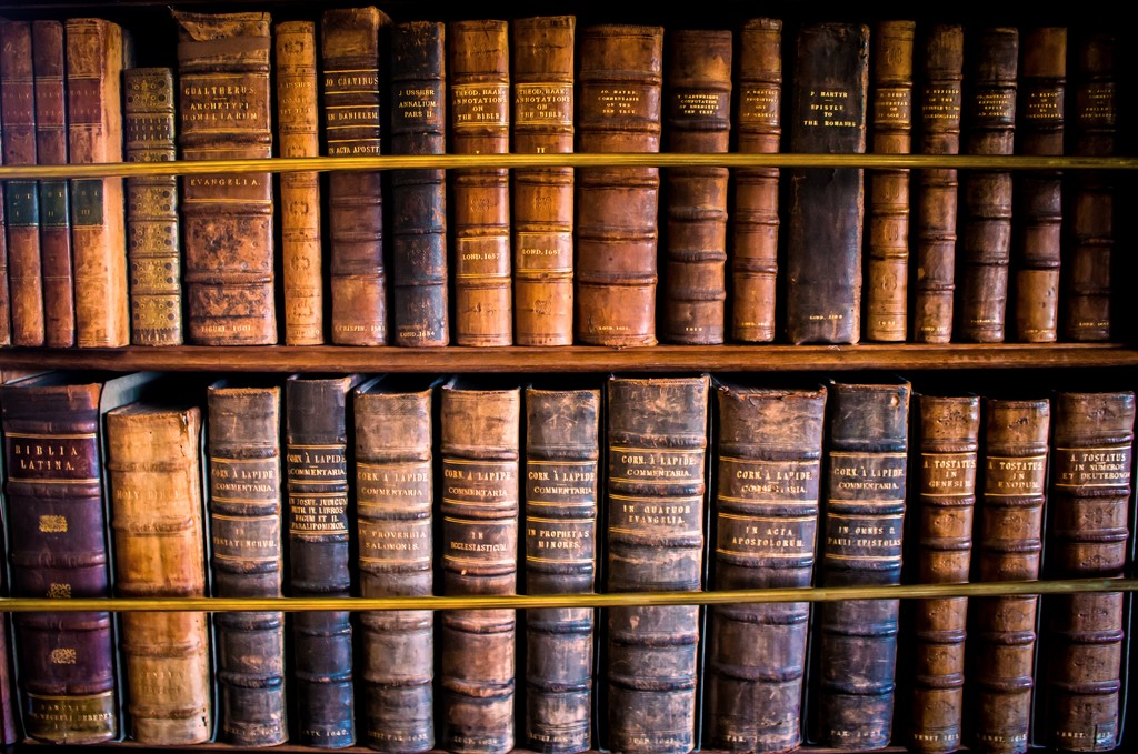 Books by swillinbillyflynn