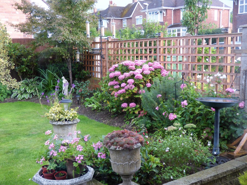 A corner in the back garden !  by beryl