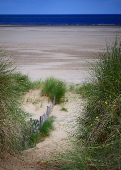 Dunes to Sea by carole_sandford