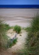 19th Aug 2017 - Dunes to Sea
