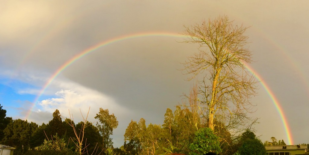 A full rainbow taken 0730 this morning  by Dawn