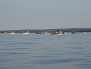 3rd Aug 2017 - Fishing Flotilla