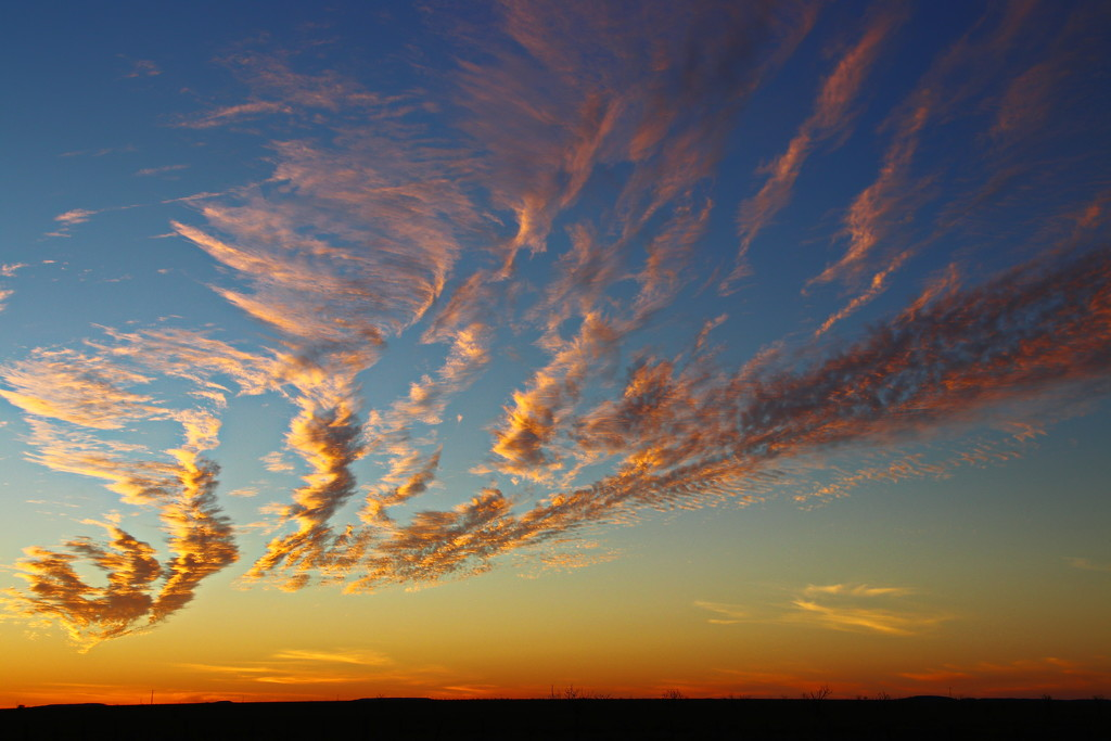 Sunset in Two Parts - Squiggly Clouds by terryliv